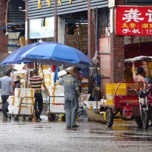 Une rue du quartier dans lequel se déroule le marché aux poissons