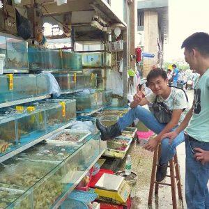 Deux jeunes chinois essaient de lier conversation