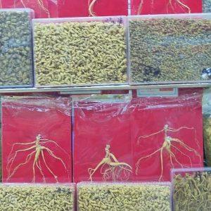 Des bocaux de racines de ginseng dans le marché aux épices de Canton