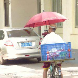 Les vélos sont dotés de tout le confort: parapluie, parasol, grand coffre...