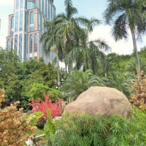 Un espace vert au cœur de la ville