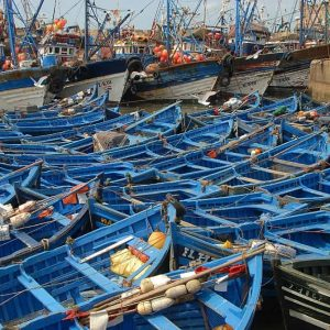 Petites barques de pêche à Essaouira