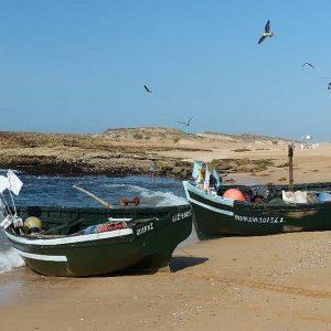 Sur la plage, les pêcheurs vendent le produit de leur pêche dans la journée