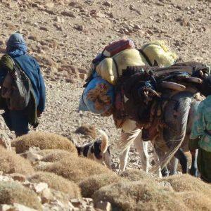 Les nomades changent de campement à la fin de l'automne et au début du printemps