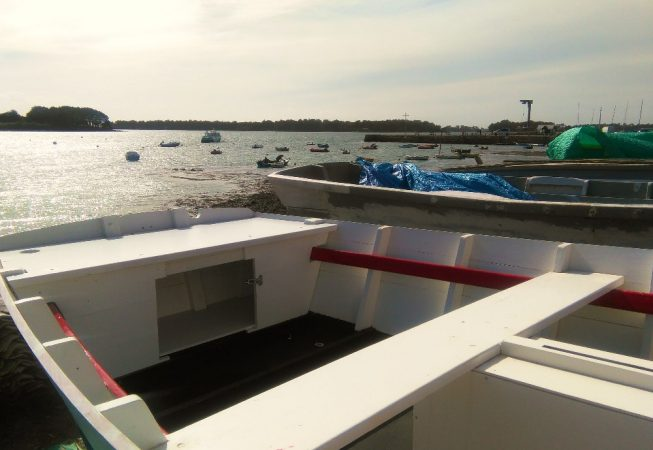 Le Golfe du Morbihan vu de Ty Plates à Larmor Baden