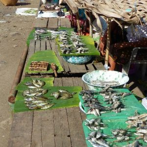 Scène de marché dans un village proche de Tetebatu