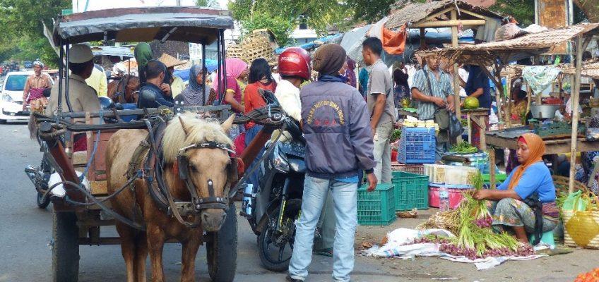Lombok – de Tetebatu à Gili Asahan