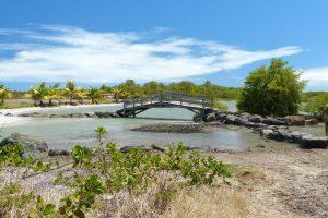 Le petit pont menant à la Savane des Pétrifications