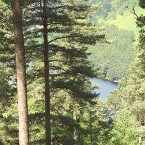 Chemin surplombant le lac de Glendalough