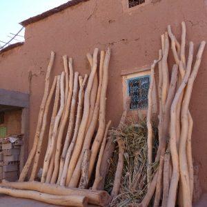 Des branches de peupliers utilisées pour supporter les plafonds dans les constructions traditionnelles dans le Haut Atlas