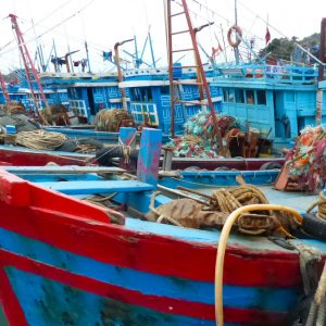 Bateaux de pêche à Catba